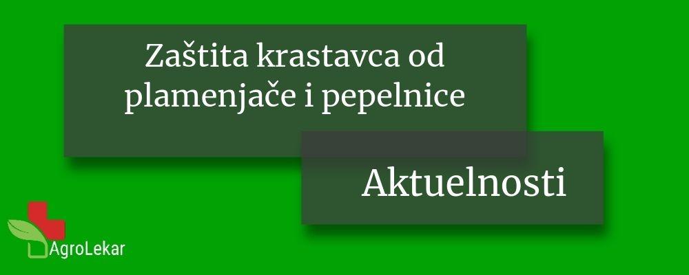Read more about the article ZAŠTITA KRASTAVCA OD PLAMENJAČE I PEPELNICE
