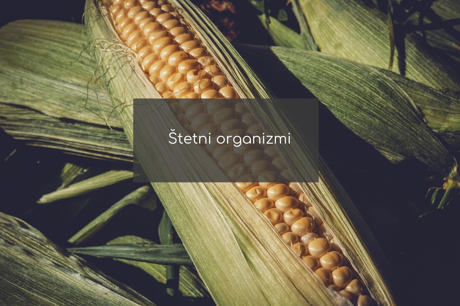 stetni organizmi zastita bilja - agrolekar