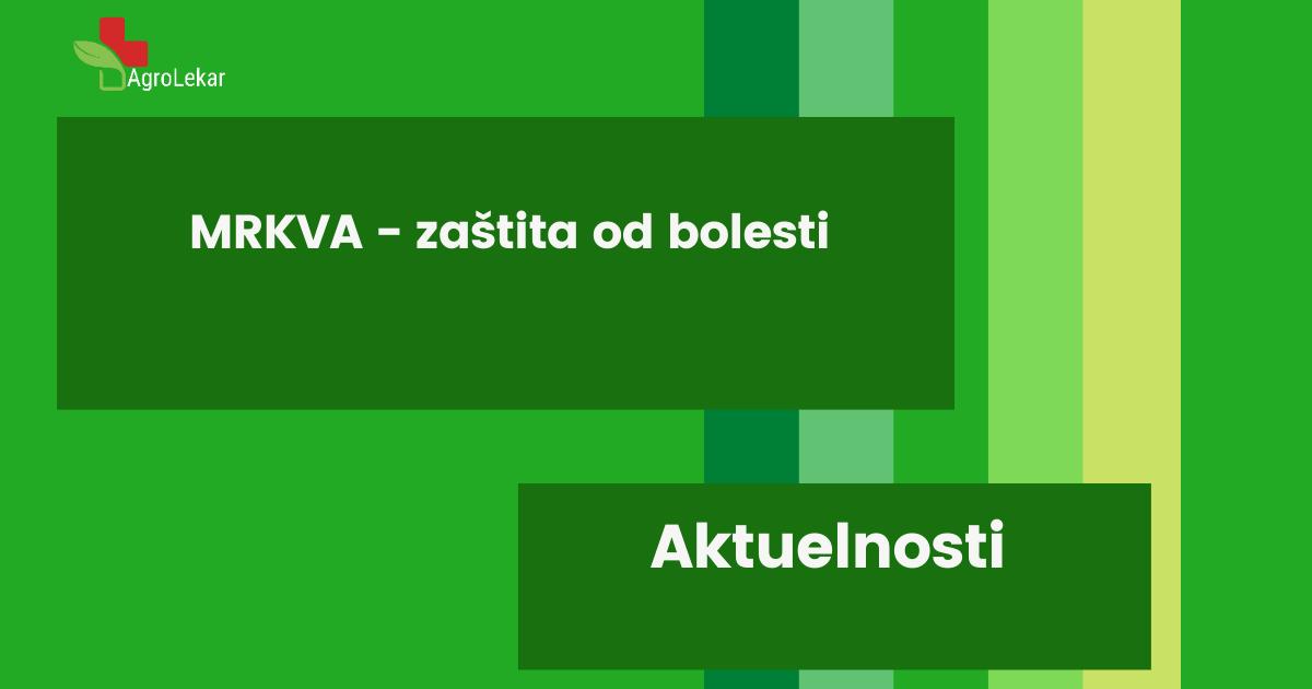 Read more about the article MRKVA – ZAŠTITA OD BOLESTI